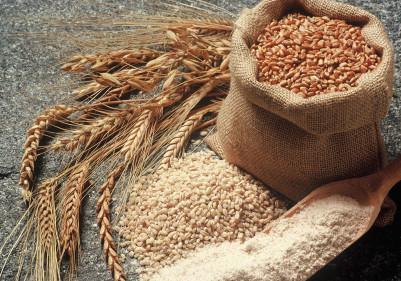 Roggen und Getreide