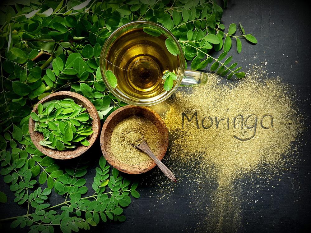 Moringa Oleifera, Superfood